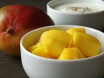 Bestandteile, zum der Mangofrucht Lassi zu mischen Stockfoto