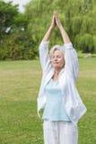 Beste Dämpferfrauen, die Yogaameise tai-Chi üben Stockfotos