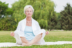 Beste Dämpferfrauen, die Yogaameise tai-Chi üben Lizenzfreie Stockfotos