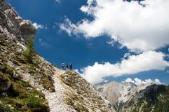 Beste Freunde, die auf einer herrlichen alpinen Steigung an einem sonnigen Sommertag wandern Stockbild
