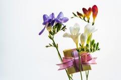 Beste Grüße für die geliebten Mädchenblumen und eine Andenken oder eine Überraschung Lizenzfreie Stockfotografie