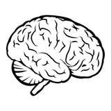 Beste menselijk hersenenteken Royalty-vrije Stock Foto's