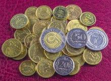 Beste Poolse munt Stock Afbeeldingen