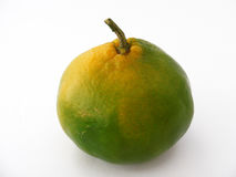 Beste Tangerinebilder für ursprüngliche Designe Stockfoto