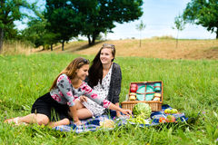 Beste vrienden die een picknick hebben Stock Fotografie