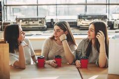 Beste vrienden die zitting spreken bij koffie royalty-vrije stock fotografie