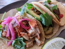 Bestellung von Tacos Lizenzfreie Stockfotografie
