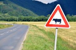 Bestiame che attraversa il segnale stradale accanto alla strada vuota, primo piano Immagini Stock Libere da Diritti