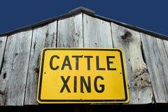Bestiame che attraversa segno Immagini Stock Libere da Diritti