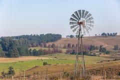 Bestiame che coltiva il paesaggio dei mulini a vento Immagini Stock