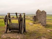 Bestiame che pasce nel campo a Ingleby Derbyshire fotografia stock libera da diritti