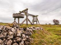 Bestiame che pasce nel campo a Ingleby Derbyshire fotografia stock