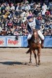 bestiame dell'esposizione dei 124 ? e l'Argentina rurale Fotografia Stock Libera da Diritti