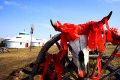 Bestiame di scheletro Immagine Stock