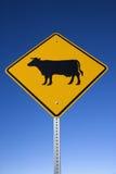 ?Bestiame segno sulla strada? Fotografie Stock