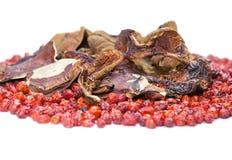 Bestimmung, dogrose und Pilz stockfoto