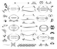Beståndsdelar inbjudan för design för stor vektoruppsättning calligraphic och sidagarnering Arkivbilder
