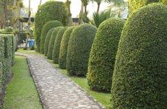 Bestrating die van steen in mooie tuin wordt gemaakt Royalty-vrije Stock Afbeeldingen