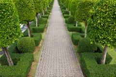 Bestrating die van steen in mooie tuin wordt gemaakt Stock Fotografie