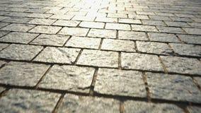 Bestrating van steen wordt gemaakt die Mooie tuingang stock video