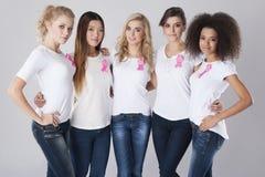 Bestrijding van borstkanker Stock Afbeelding