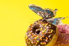 Bestrooid Roze en chokolate Doughnut Berijpte bestrooide doughnut op gele achtergrond stock foto