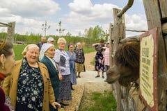 Besuchen Sie die Veterane des Weltkriegs 2 Safari Park in der Kaluga-Region von Russland lizenzfreie stockfotos