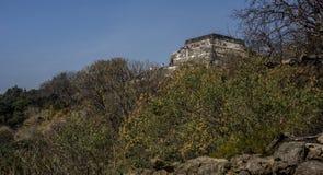 Besucher auf mexikanischem Tempel stockbild