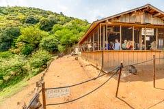 Besucher, die japanischen Makaken einziehen Stockbild