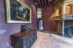 Besuchs-Blois-Schloss Stockbilder