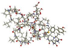 Beta内啡肽分子结构 皇族释放例证