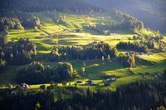 Beta i höst i södra Tyrol (Italien) Arkivbilder