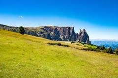 Betar framme av monteringen Sciliar, Dolomites, Italien Arkivfoto