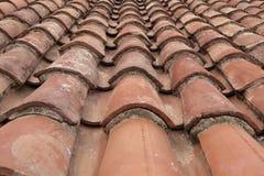 Betegeld Terracottadak Stock Foto