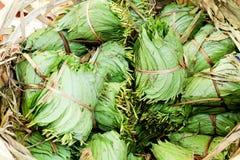 betel καρύδι φύλλων Στοκ φωτογραφία με δικαίωμα ελεύθερης χρήσης