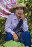 Betel πωλητής φύλλων στο Μιανμάρ Στοκ Εικόνα