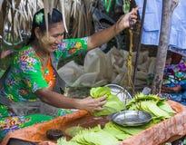 Betel πωλητής φύλλων στο Μιανμάρ Στοκ εικόνες με δικαίωμα ελεύθερης χρήσης