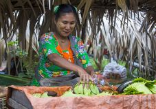 Betel πωλητής φύλλων στο Μιανμάρ Στοκ Φωτογραφίες