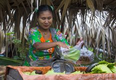 Betel πωλητής φύλλων στο Μιανμάρ Στοκ εικόνα με δικαίωμα ελεύθερης χρήσης