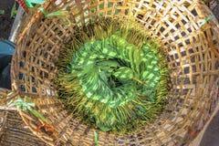 Betel φύλλα σε ένα καλάθι ινδικού καλάμου Στοκ Εικόνες