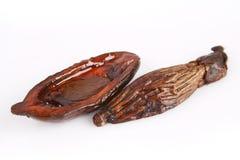 Betel. Isolated macro image of betel nut shavings Royalty Free Stock Image
