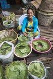 BETEL LEAFES DEL MERCADO DE ASIA MYANMAR RANGÚN Fotografía de archivo