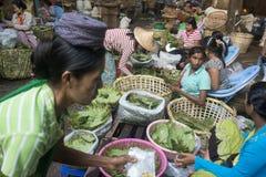 BETEL LEAFES DEL MERCADO DE ASIA MYANMAR RANGÚN Fotografía de archivo libre de regalías