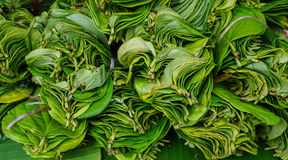 Betel leaves for sale at the market Royalty Free Stock Photo