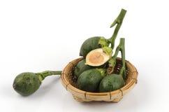 Betel nut , Areca palm (Areca catechu Linn.) Royalty Free Stock Photo