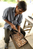 Betel nut cutting Andamans. India Asia royalty free stock photography
