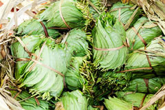 Betel Nut leaves. Betel leaves are used to wrap areca nuts, lime and tobacco. The gum sized bundle is chewed to produce a sense of wellbeing and euphoria. In Royalty Free Stock Photo