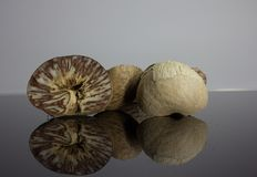 Betel nut is placed on a black background with reflection.  Royalty Free Stock Image
