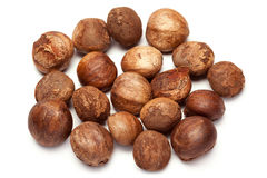 Betel nut unroasted (Areca catechu) Royalty Free Stock Photo