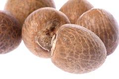Betel Nuts Macro Isolated Royalty Free Stock Photo